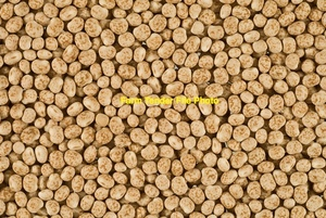 WANTED WHOLE LUPINS - BY THE PALLET OR IN BULK