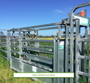 Cow Catcher, Portable Yard & Loading Ramp
