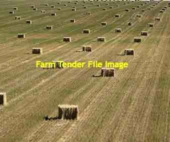190 x Oaten Hay 600kg 8x4x3 Bales (Under Covers)