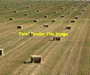 190 x Oaten Hay 600kg 8x4x3 Bales (Under Covers)