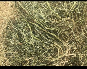 Clover And Rye Round Bale Hay