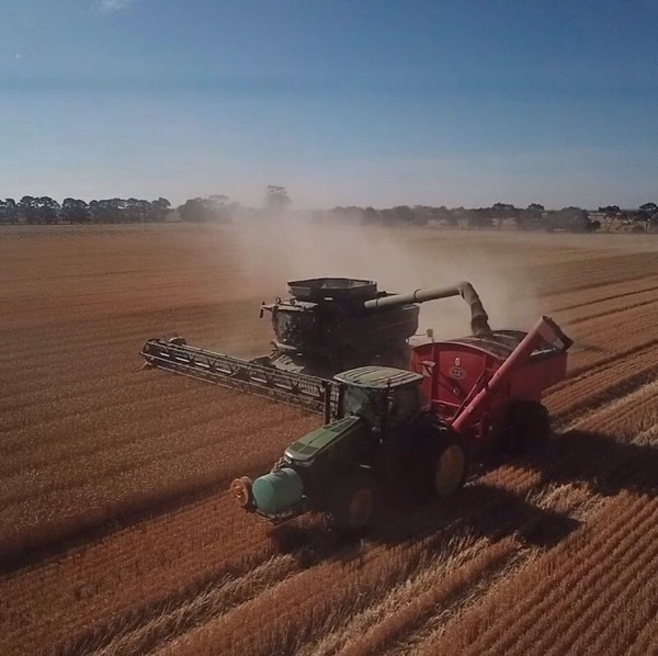 Harvest Work Wanted