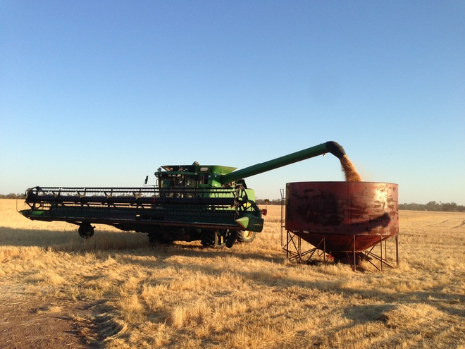 Contract Harvesting + Chaser Bin