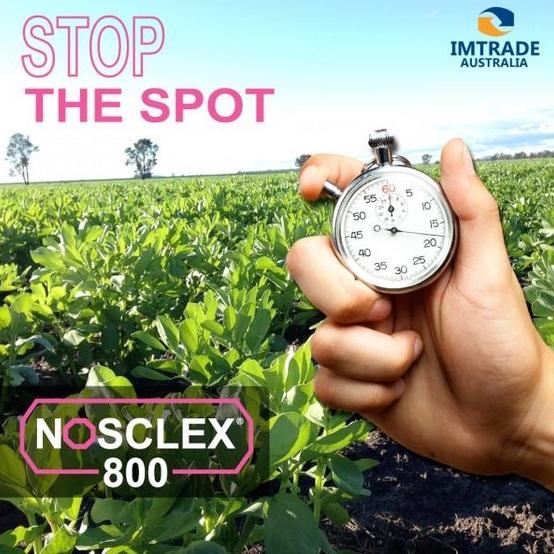 Imtrade Nosclex 800 WG Fungicide 5kg