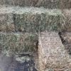 Quality Oaten Hay
