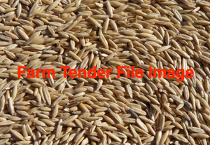 WANTED Hay Oat Seed