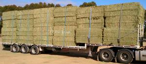 For Sale Balansa Clover & Rye Hay in 8x4x3's x 82