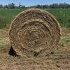 Wheaten/Rye/Lucerne/Clover Rolls