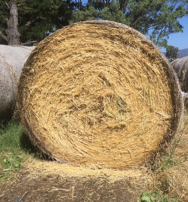 Oaten/Ryegrass Round Hay Bales For Sale
