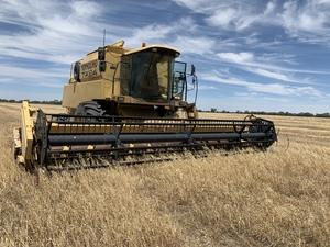 New Holland TX 64 Header / Harvester For Sale