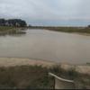 Agistment available 80 acres Dadswells Bridge