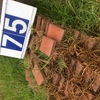 Under Auction - Under Auction (A129) - Approx. 200 Red Pavers - 2% + GST Buyers Premium On All Lots