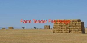40 Pasture Hay Rolls