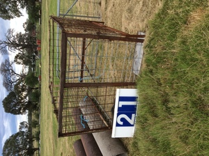 Under Auction - (A129) - Calf Crate 7 Ft x 5 Ft 6 inches - 2% + GST Buyers Premium On All Lots