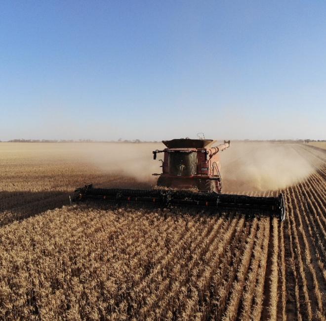 !! Harvesting !! Case 8240 40ft front set up for 12m CTF