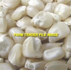 WANTED White Corn