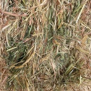 Oat/Wheat Hay