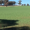 206 Acres (83.4063ha) Farming / Grazing Country Located on Carapooee - Kooreh Road Victoria. **  NEW PRICE **