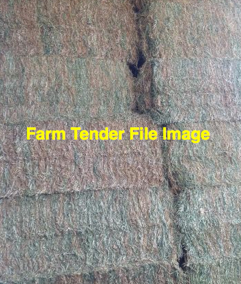 2nds Rye Vetch Hay & Straw Tailings 8x4x3 Bales (Make an Offer)