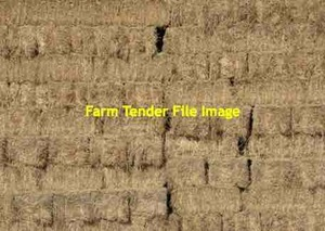 Pea Straw 290 Bales Available Seller to Freight