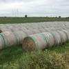 Wheaten hay - old crop 2019 - shedded