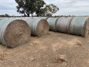Wheaten Straw 5x4 Round Bales