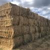 250 x 500kg 8x4x3 Bales of New Season Hay (2 Varieties)