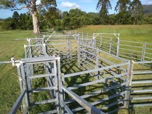 H/D Aust Gal 120 head Wild Cattle Yard (Aust Made)