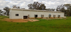 40 x 8m Fully environmentally controlled Chicken raring shed and Gear for Sale
