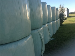 SILAGE 4X4 ROUNDS