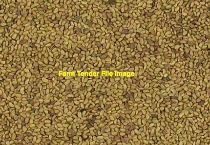 Hunter River Lucerne Seed in 25kg Bags