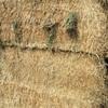 72mt Wheaten/Vetch Hay 600-605kg 8x4x3 Bales