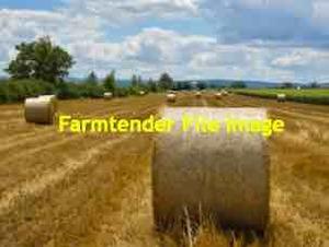 200 x Wheaten Straw 5x4 Round Bales