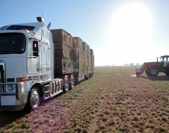 Wanted B Double Hay Cartage