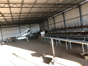 Under Auction - (A137) - General Purpose Fruit Grader - 2% + GST Buyers Premium On All Lots