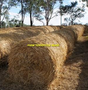 Grass Hay Rolls