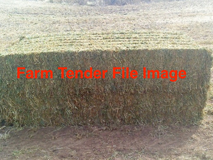 Top Quality Vetch Hay Delivered into Gippsland
