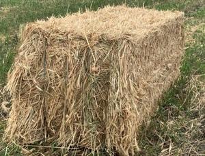 300mt Wheaten Hay 330-350kg 8x3x3 Bales