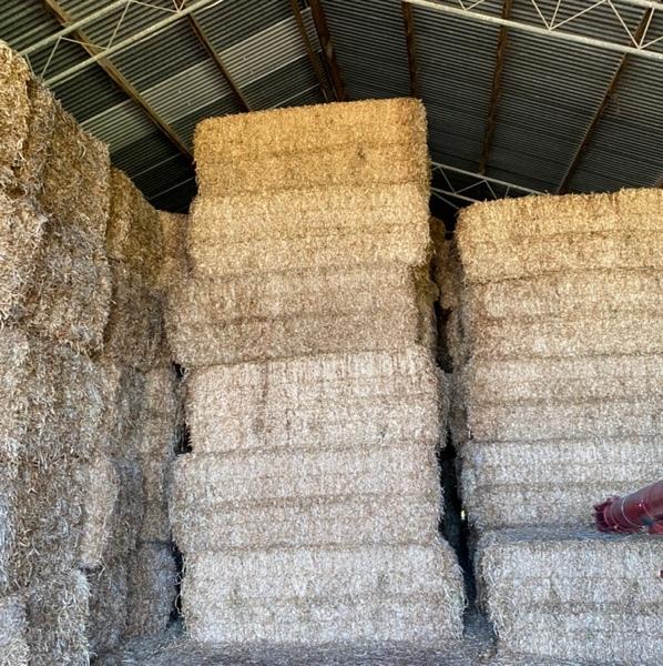 Shedded clover hay - squares