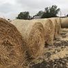 500 Oaten Rye Hay 5x4 Rolls 'New Season'