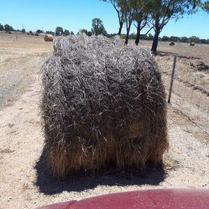 Ryegrass Hay 5x4 Rolls