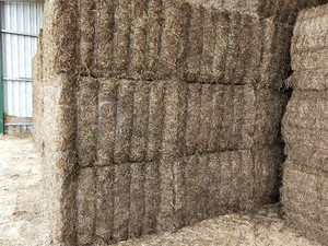 600mt Vetch Hay 650kg 8x4x3 Bales (Road Train Access)