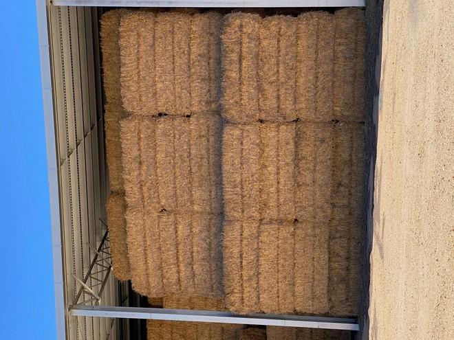 250t Barley Hay & 250t Wheaten Hay 2019 season