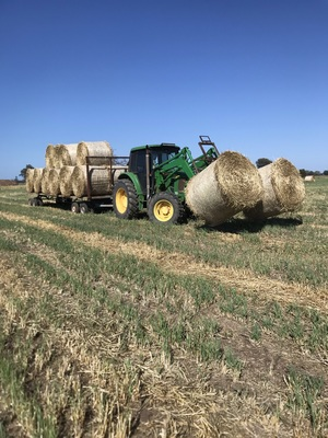400mt Oaten Hay 5x4 Rolls (New Season)