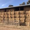 50mt Wheaten Hay 8x4x3 Bales