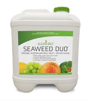 Seaweed Duo ORGANIC AUSTRALIAN BULL KELP + OCEAN ALGAE