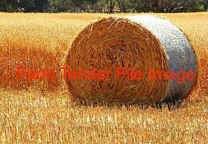 350 x Oaten Rye Hay 400kg 5x4 Round Bales + Freight