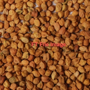 WANTED Chickpeas (Desi) EOI for Up Coming Crop