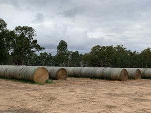 Wheaten Hay 550kg 8x4x3 Bales