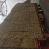 Wheaten Hay - 250mt available